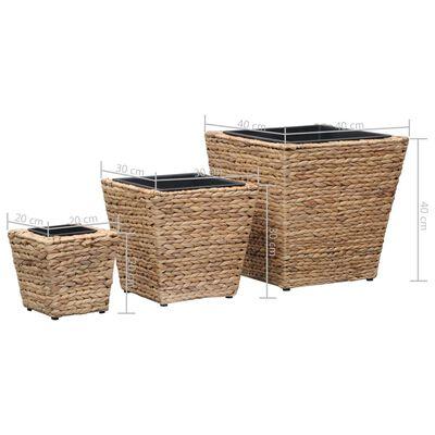 vidaXL Garden Raised Beds 3 pcs Water Hyacinth